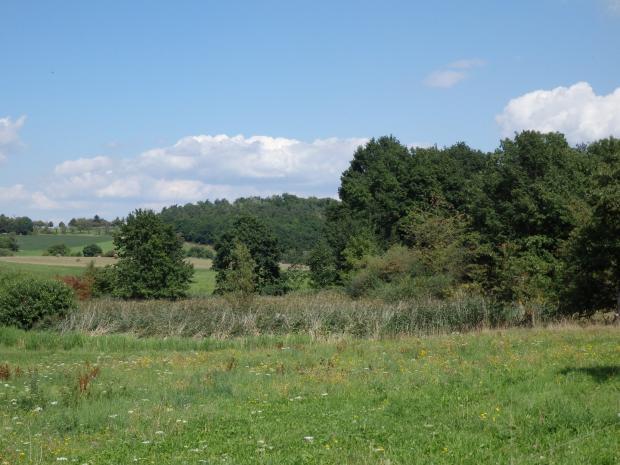 Blick auf Kleingewässer Biensdorf