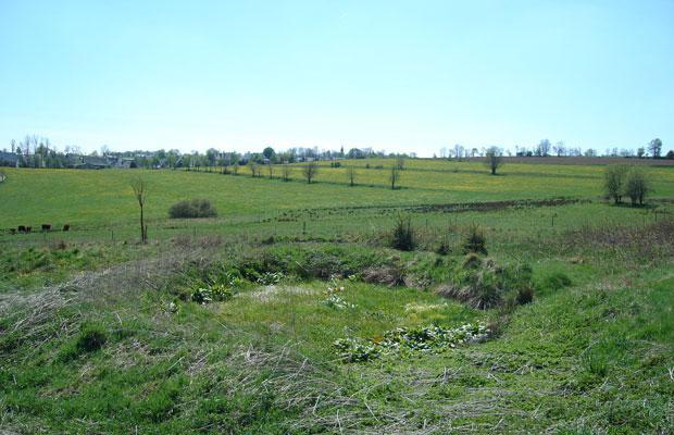Fläche im Jahr 2005