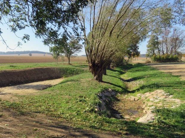 Zulauf Beerwalder Bach während der Umsetzung