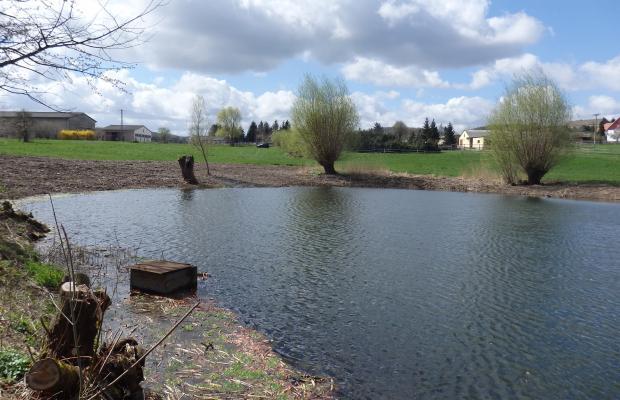 Kleingewässer Biensdorf nach der umgesetzten Maßnahme