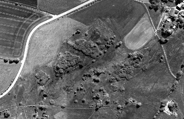 Luftbild der Fläche (2015 - vor der Maßnahme)