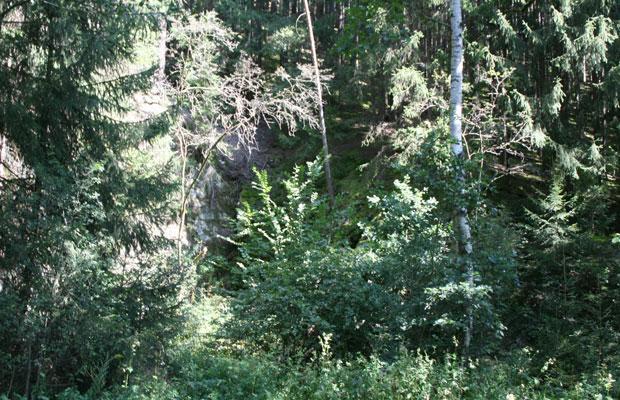 Steinbruch Tetterweintal vor der Maßnahme