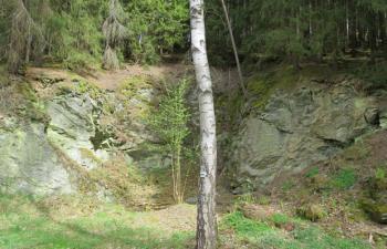 Steinbruch Tetterweintal nach der Maßnahme
